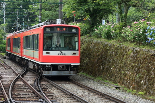 5N8A8993.JPG